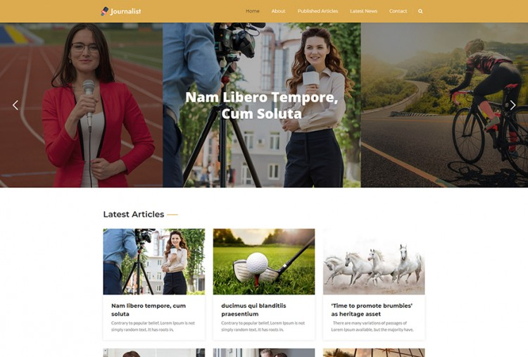 Journalist Portfolio WordPress Theme
