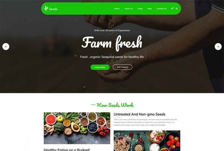 Seeds WordPress Theme
