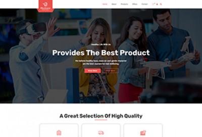 Electronic Store WordPress Theme