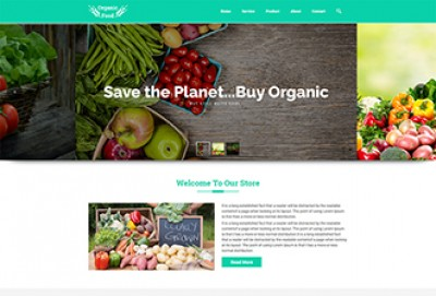 Organic Food Store HTML Website Template