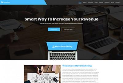 Internet And Digital Marketing WordPress Theme