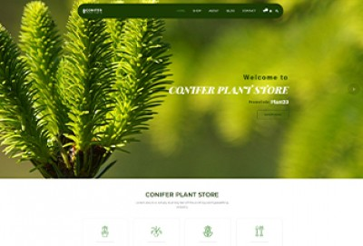 Conifer Plant Store Wordpress Theme