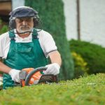 A Way to Garden | Organic Gardening Blog