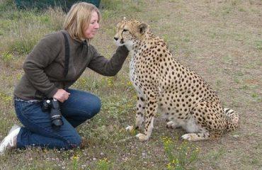 How to click Wild Photo.